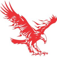 Eagle Flames light-colored apparel iron on stickers version 3