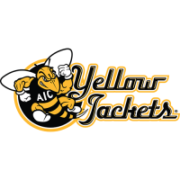AIC Yellow Jackets 2009-Pres Alternate Logo3 Light Iron-on Stickers (Heat Transfers)