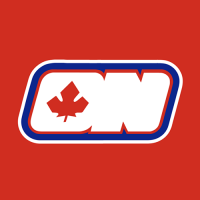 Ottawa Nationals 1972 73 Jersey Logo Light Iron-on Stickers (Heat Transfers)