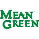North Texas Mean Green 2005-Pres Wordmark Logo6 Light Iron-on Stickers (Heat Transfers)