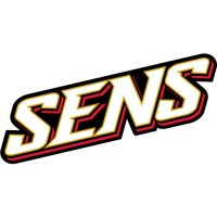 Ottawa Senators Script Logo  Light Iron-on Stickers (Heat Transfers)
