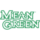 North Texas Mean Green 2005-Pres Wordmark Logo4 Light Iron-on Stickers (Heat Transfers)