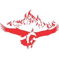 Eagle Flames light-colored apparel iron on stickers version 2