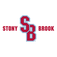 2008-Pres Stony Brook Seawolves Alternate Logo Light Iron-on Stickers (Heat Transfers) Printing