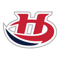 2013 14-Pres Lethbridge Hurricanes Primary Logo Light Iron-on Stickers (Heat Transfers)