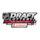 2012 13 NHL Draft Misc Logo fabric Light Iron-on Stickers (Heat Transfers)