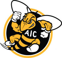 AIC Yellow Jackets 2009-Pres Alternate Logo5 Iron on Trnasfer