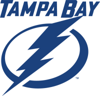 Tampa Bay Lightning 2011 12-Pres Alternate Logo1 Light Iron-on Stickers (Heat Transfers)