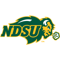 2012-Pres North Dakota State Bison Primary Logo Light Iron-on Stickers (Heat Transfers)