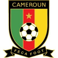 Cameroon Football Confederation Light Iron-on Stickers (Heat Transfers)