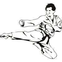 Karate Flying Kick Martial Arts
