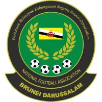 Brunei Darussalam Football Confederation Light Iron-on Stickers (Heat Transfers)
