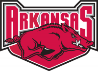 Arkansas Razorbacks 2001-2008 Alternate Logo1 Light Iron-on Stickers (Heat Transfers)