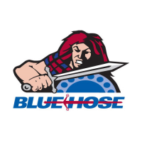 2001-Pres Presbyterian Blue Hose Alternate Logo Light Iron-on Stickers (Heat Transfers) Light Iron-on Stickers (Heat Transfers)