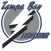 Tampa Bay Lightning Primary Logo 2001 Light Iron-on Stickers (Heat Transfers)