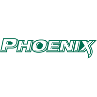 2011-Pres Wisconsin-Green Bay Phoenix Wordmark Logo Light Iron-on Stickers (Heat Transfers)