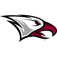 2006-Pres NCCU Eagles Partial Logo Light Iron-on Stickers (Heat Transfers)