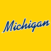 1996-Pres Michigan Wolverines Wordmark Logo Light Iron-on Stickers (Heat Transfers)