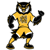 Kennesaw State Owls 2012-Pres Mascot Logo Light Iron-on Stickers (Heat Transfers)