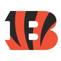 Cincinnati Bengals Primary Logo  Light Iron-on Stickers (Heat Transfers)