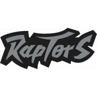 Toronto Raptors Script Logo  Light Iron-on Stickers (Heat Transfers)