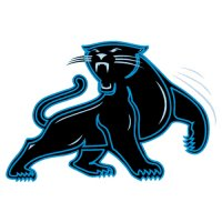 Carolina Panthers Alternate Logo  Light Iron-on Stickers (Heat Transfers) version 2