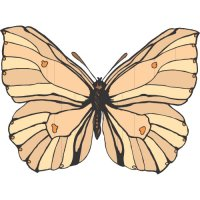 Butterfly Light Iron On Stickers (Heat Transfers) version 10