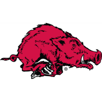Arkansas Razorbacks 1967-1979 Alternate Logo Light Iron-on Stickers (Heat Transfers)