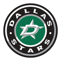 2013 14-Pres Dallas Stars Secondary Logo Iron On Decal Light Iron-on Stickers (Heat Transfers)