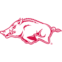 Arkansas Razorbacks 2001-Pres Alternate Logo Light Iron-on Stickers (Heat Transfers)