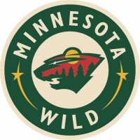 Minnesota Wild Alternate Logo  Light Iron-on Stickers (Heat Transfers) version 3