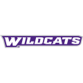 Abilene Christian Wildcats 2013-Pres Wordmark Logo1 Light Iron-on Stickers (Heat Transfers)