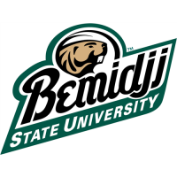 Bemidji State Beavers 2004-Pres Alternate Logo1 Light Iron-on Stickers (Heat Transfers)