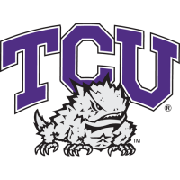 1995-Pres TCU Horned Frogs Primary Logo Light Iron-on Stickers (Heat Transfers)