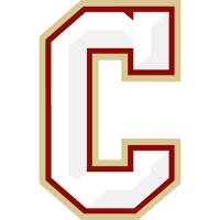 2013-Pres Charleston Cougars Secondary Logo Light Iron-on Stickers (Heat Transfers)