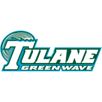 1998-Pres Tulane Green Wave Wordmark Logo Light Iron-on Stickers (Heat Transfers)