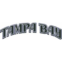 Tampa Bay Rays Script Logo  Light Iron-on Stickers (Heat Transfers) version 2