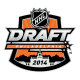 2013 14 NHL Draft Primary Logo Light Iron-on Stickers (Heat Transfers)
