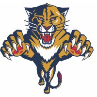 Florida Panthers Primary Logo Light Iron-on Stickers (Heat Transfers) (Large Front Logo)