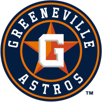 Greeneville Astros 2013 primary Logo Light Iron-on Stickers (Heat Transfers)