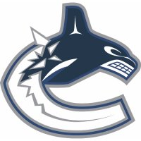 Vancouver Canucks Alternate Logo  Light Iron-on Stickers (Heat Transfers) version 1