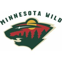 Minnesota Wild Alternate Logo  Light Iron-on Stickers (Heat Transfers) version 1