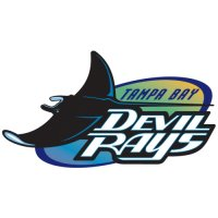 Tampa Bay Rays Primary Logo  Light Iron-on Stickers (Heat Transfers)