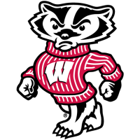 2002-Pres Wisconsin Badgers Mascot Logo Light Iron-on Stickers (Heat Transfers)