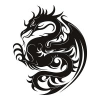 Dragon Print Light Iron On Stickers (Heat Transfers)