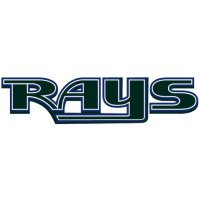Tampa Bay Rays Script Logo  Light Iron-on Stickers (Heat Transfers) version 1