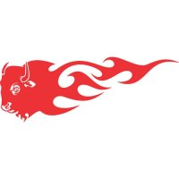 Buffalo Flames light-colored apparel iron on stickers