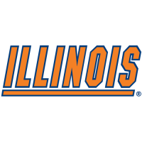 Illinois Fighting Illini 1989-Pres Wordmark Logo Light Iron-on Stickers (Heat Transfers)