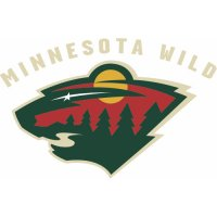 Minnesota Wild Alternate Logo  Light Iron-on Stickers (Heat Transfers) version 2