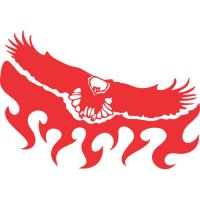 Eagle Flames light-colored apparel iron on stickers version 5